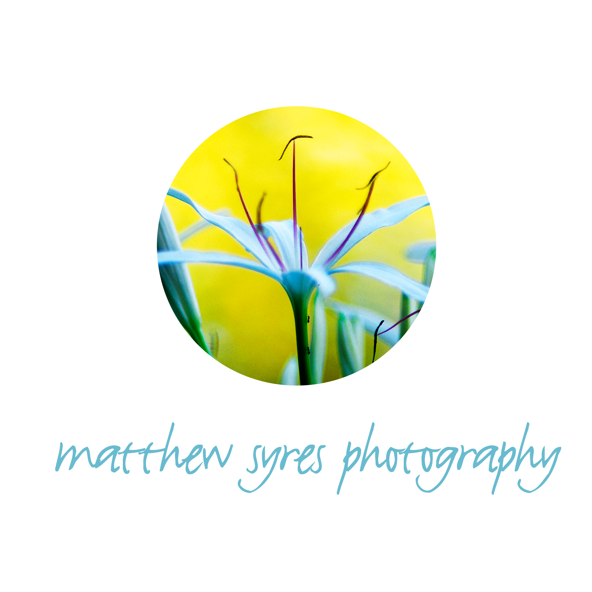 Matthew Syres Photography